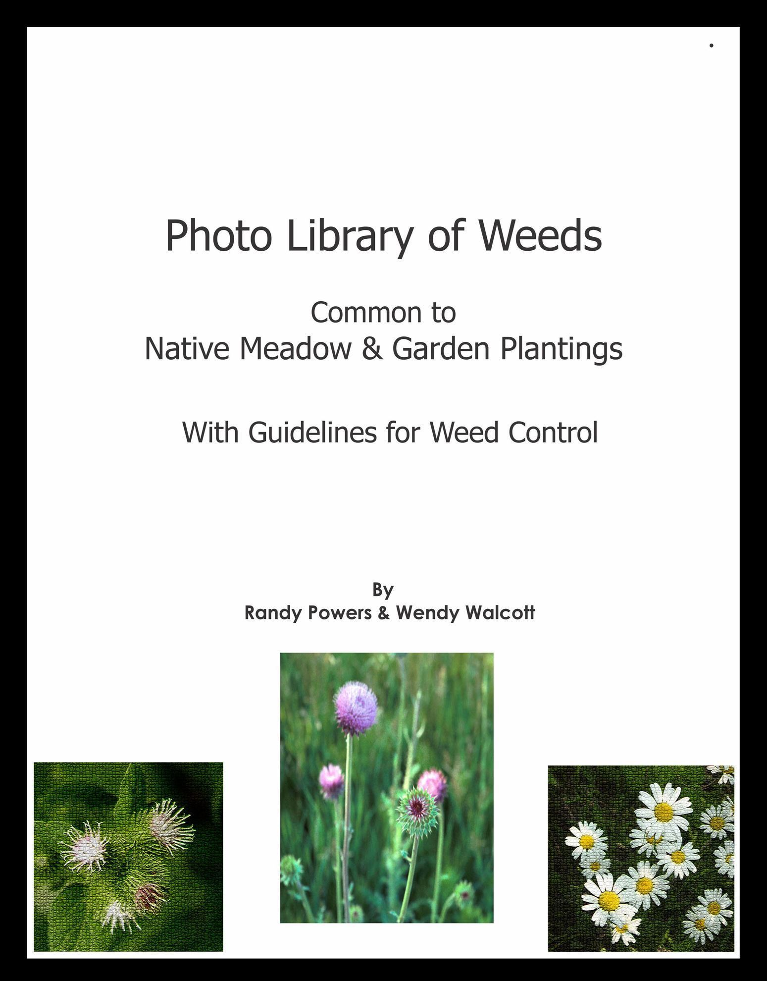 Picture of Photo Library of Weeds